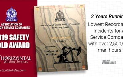 2019 Gold Safety Award